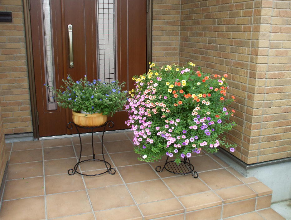 http://gr-garden.com/168%2C169-image2.jpg