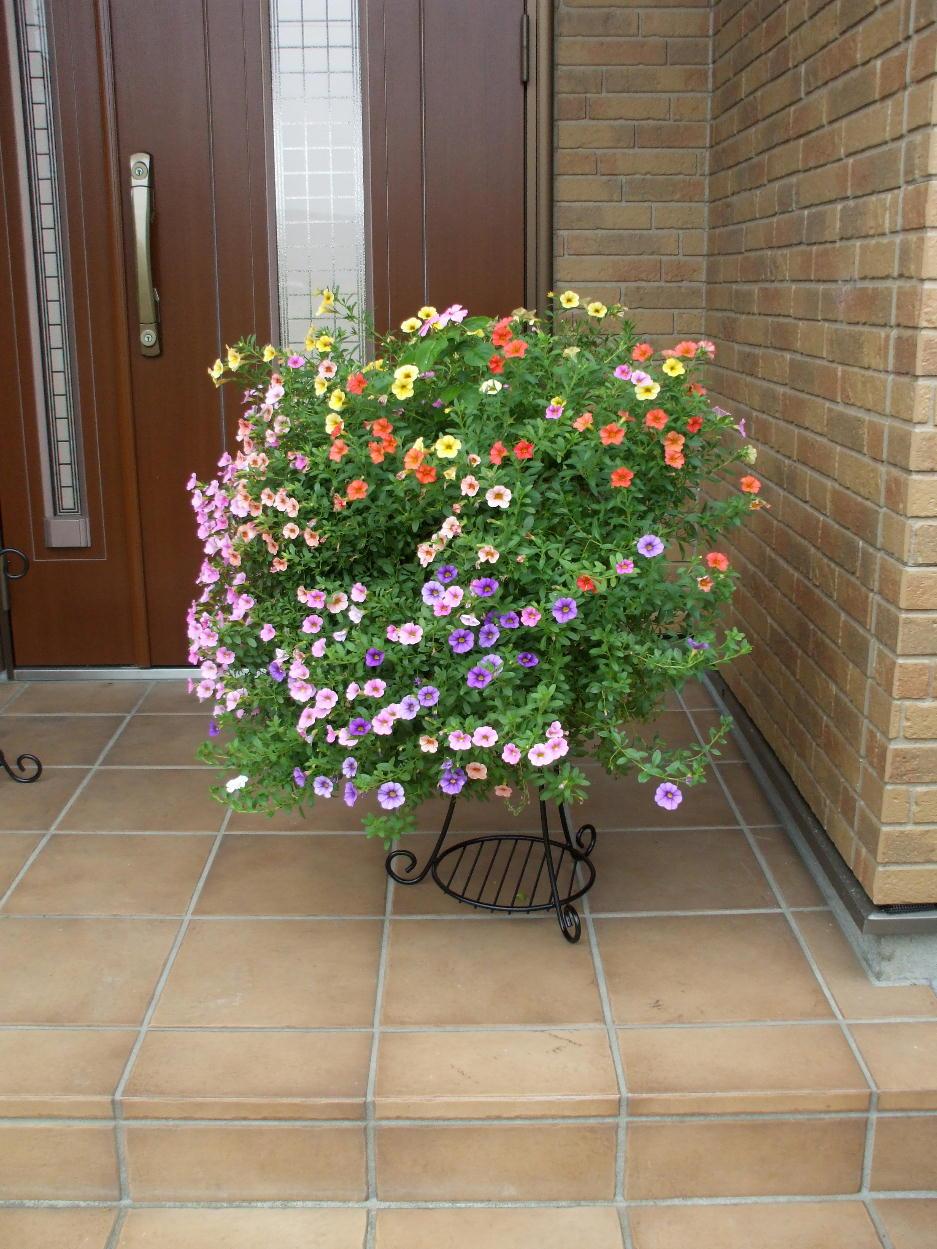 http://gr-garden.com/169-image3.jpg
