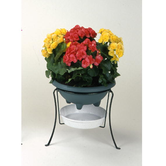 http://gr-garden.com/176%2C179-image.jpg