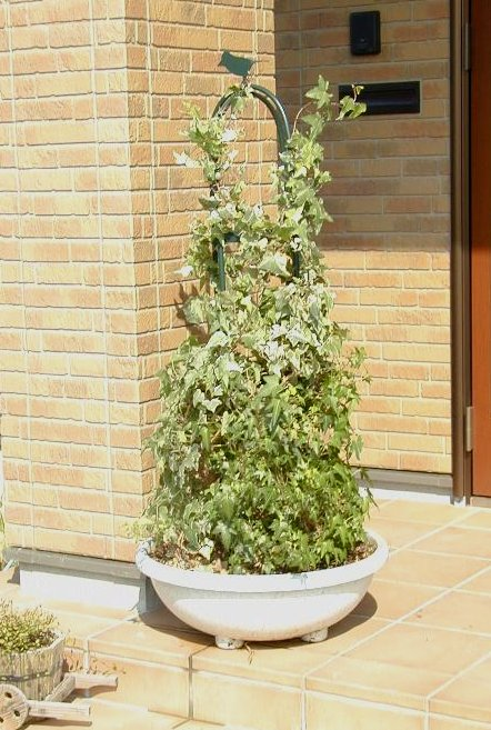http://gr-garden.com/224-image4.JPG