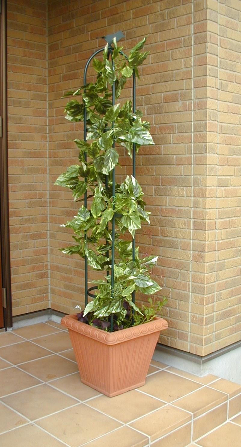 http://gr-garden.com/225-image4.JPG