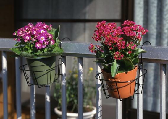 http://gr-garden.com/245-image2.jpg