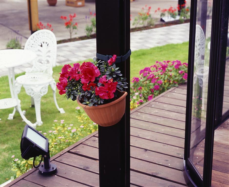 http://gr-garden.com/271A-image.jpg