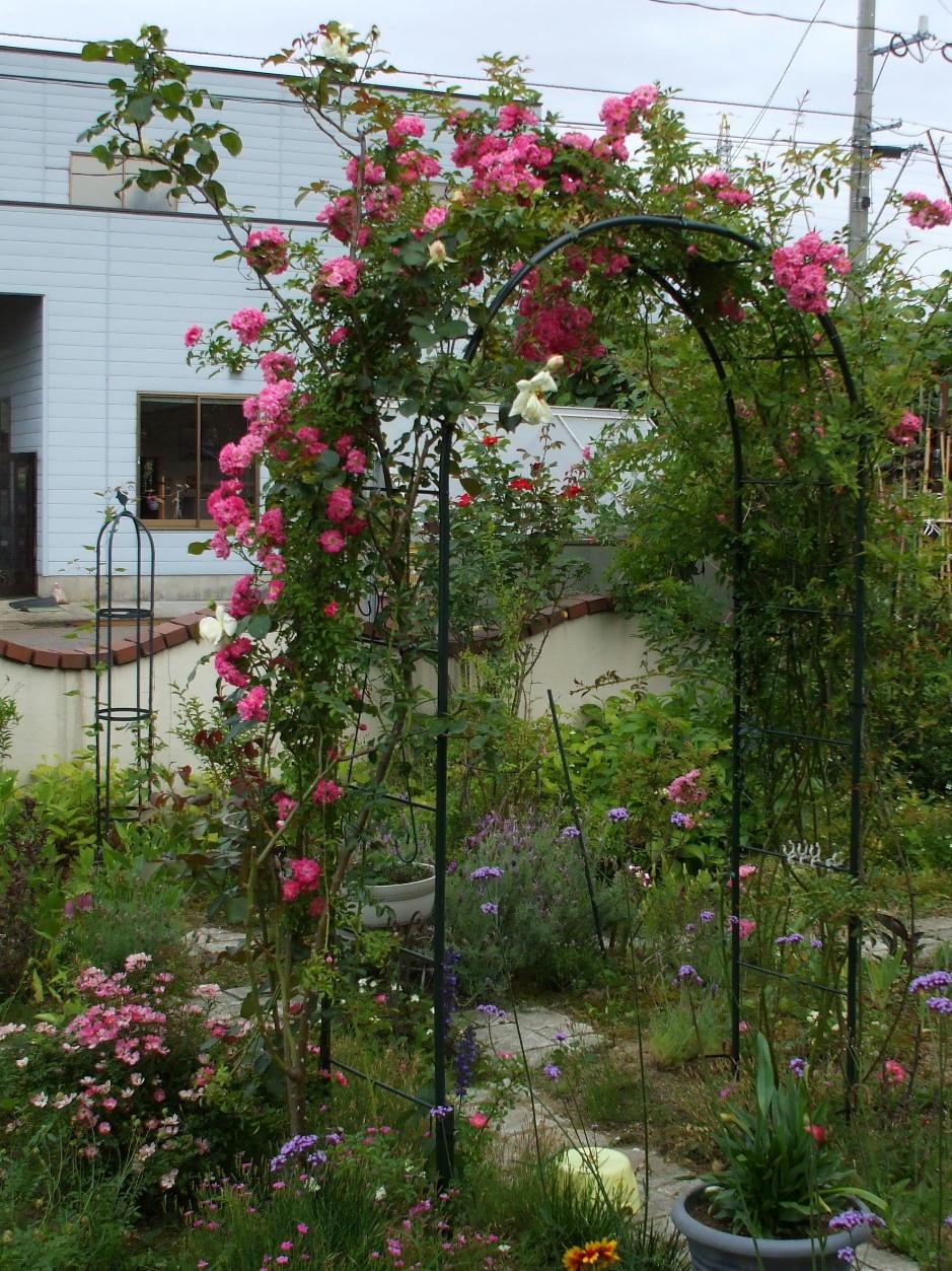 http://gr-garden.com/arch-216-image.jpg