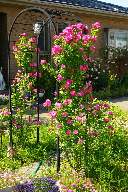 http://gr-garden.com/arch-c-a-image1.jpg