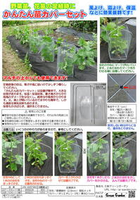 seedling-cover-panfu.jpg