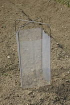 seedling-cover-set.jpg