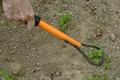 garden-pro-mini-image6.jpg