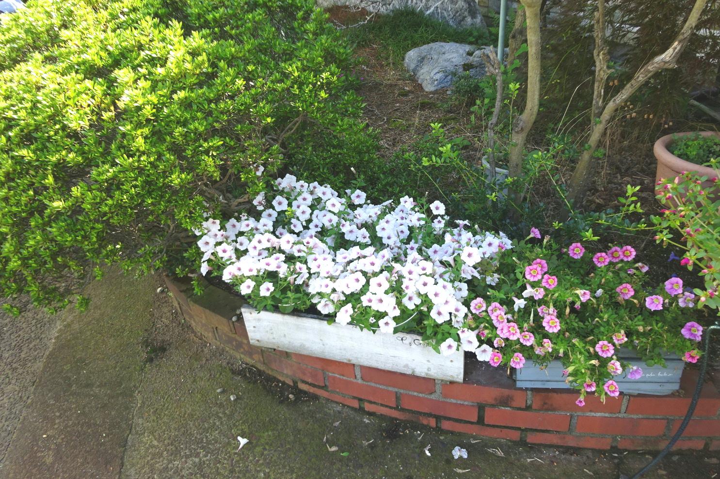 http://gr-garden.com/flower-guard-image1.jpg