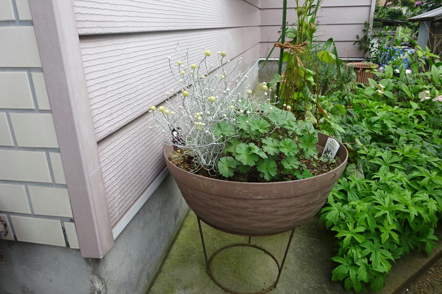 http://gr-garden.com/flower-guard-image10.jpg