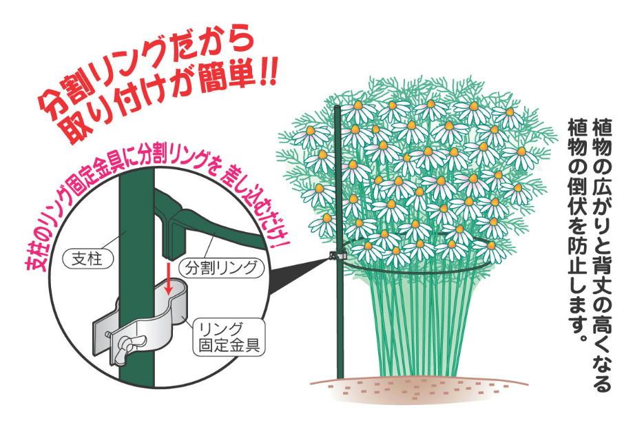 http://gr-garden.com/hatarenu-point1.jpg