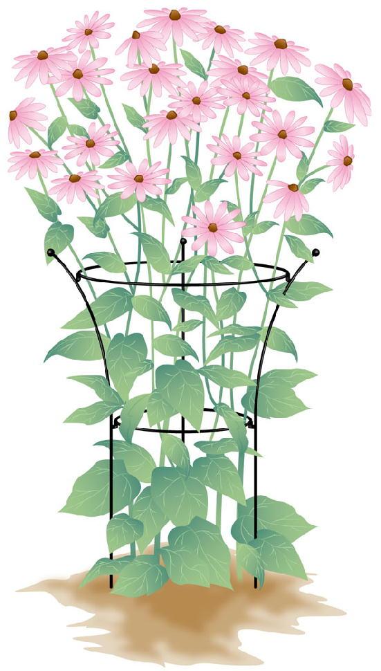 http://gr-garden.com/item/flower_support/420-1.jpg