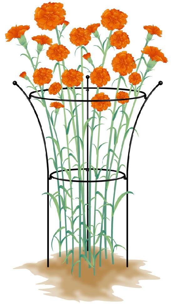 http://gr-garden.com/item/flower_support/421-1.jpg