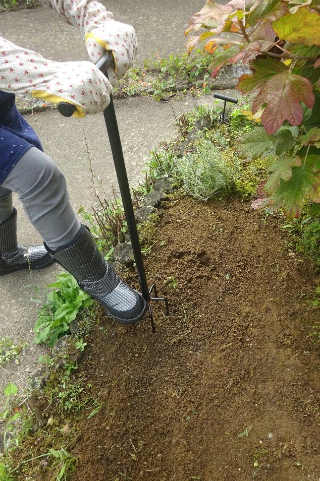 http://gr-garden.com/item/grass_cut/04170.jpg