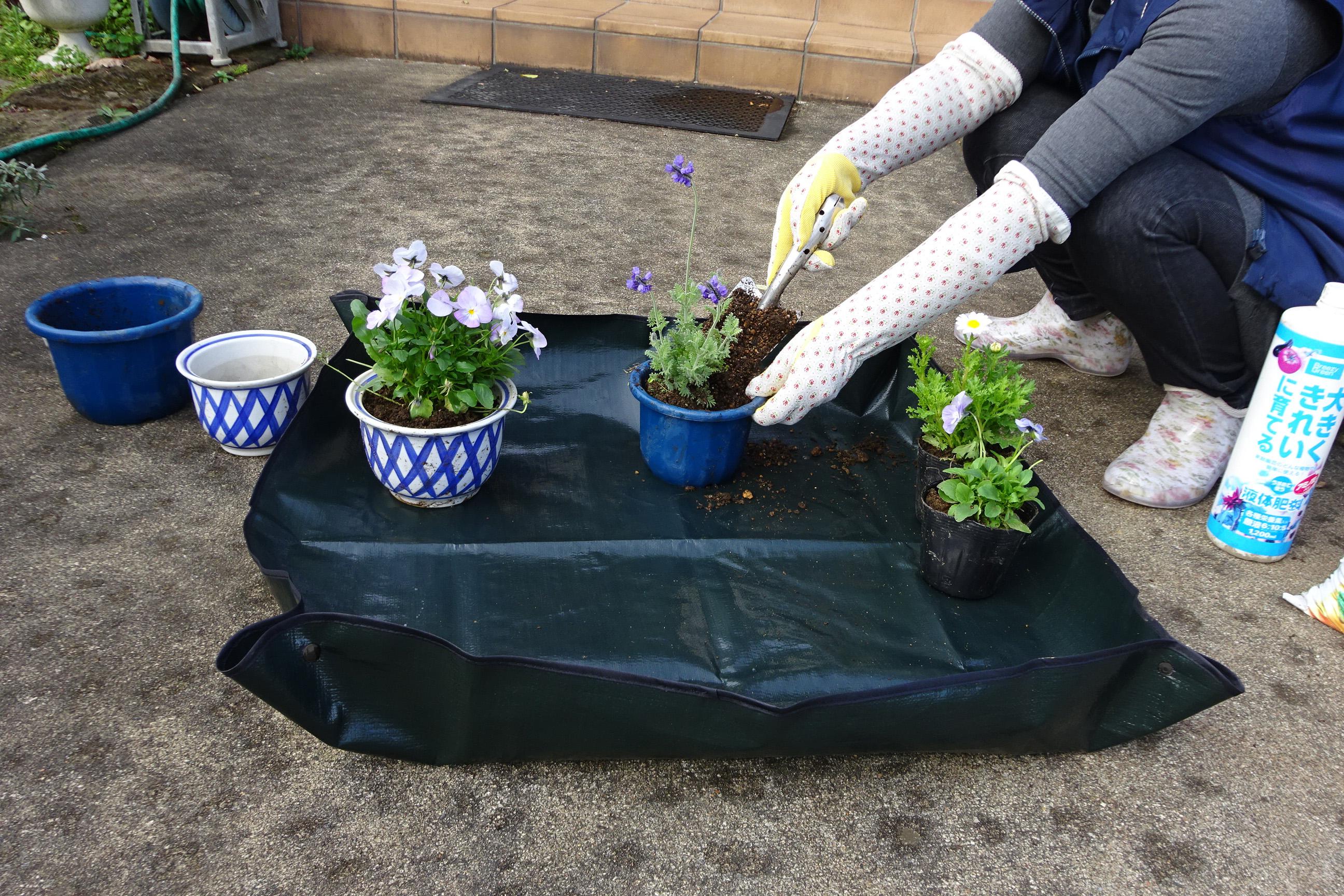 http://gr-garden.com/item/grass_cut/n-sheet-image3.JPG