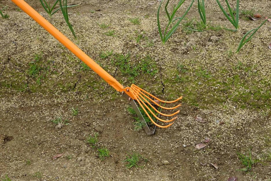 http://gr-garden.com/item/grass_cut/wide-image2.jpg