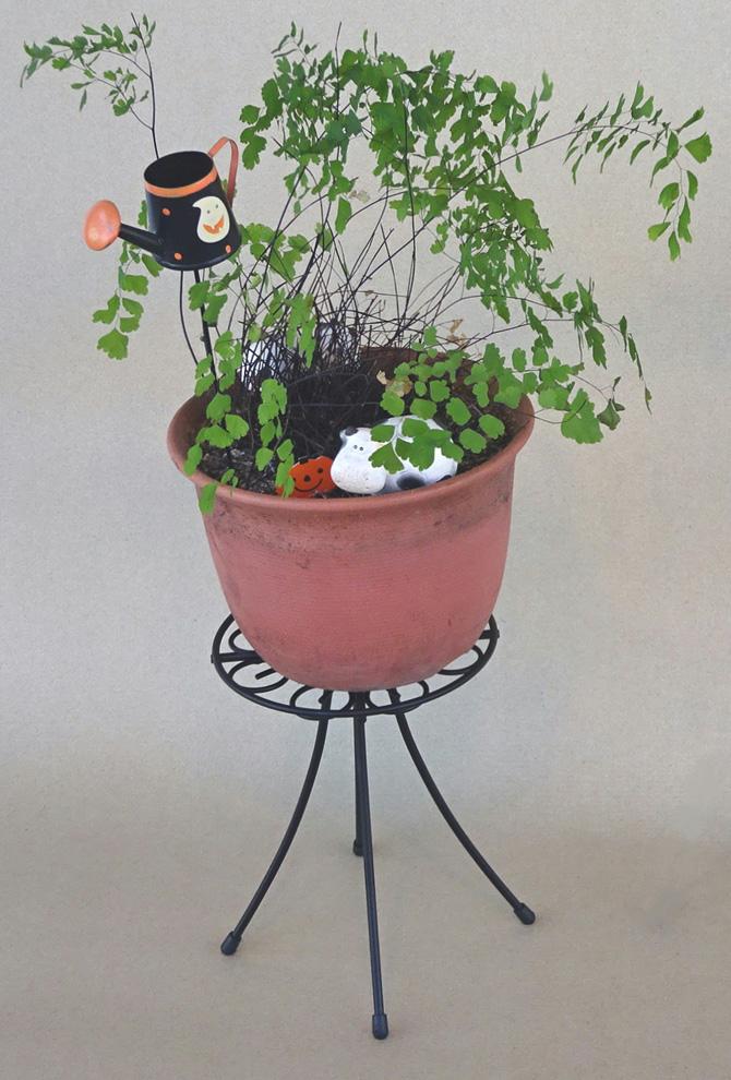 http://gr-garden.com/item/planter/320image.jpg