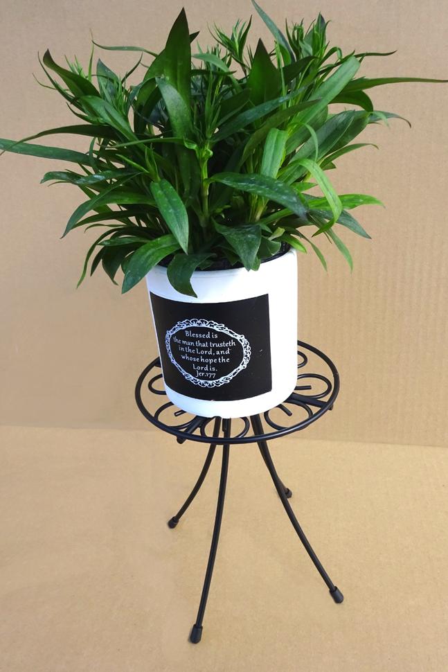 http://gr-garden.com/item/planter/320image2.jpg