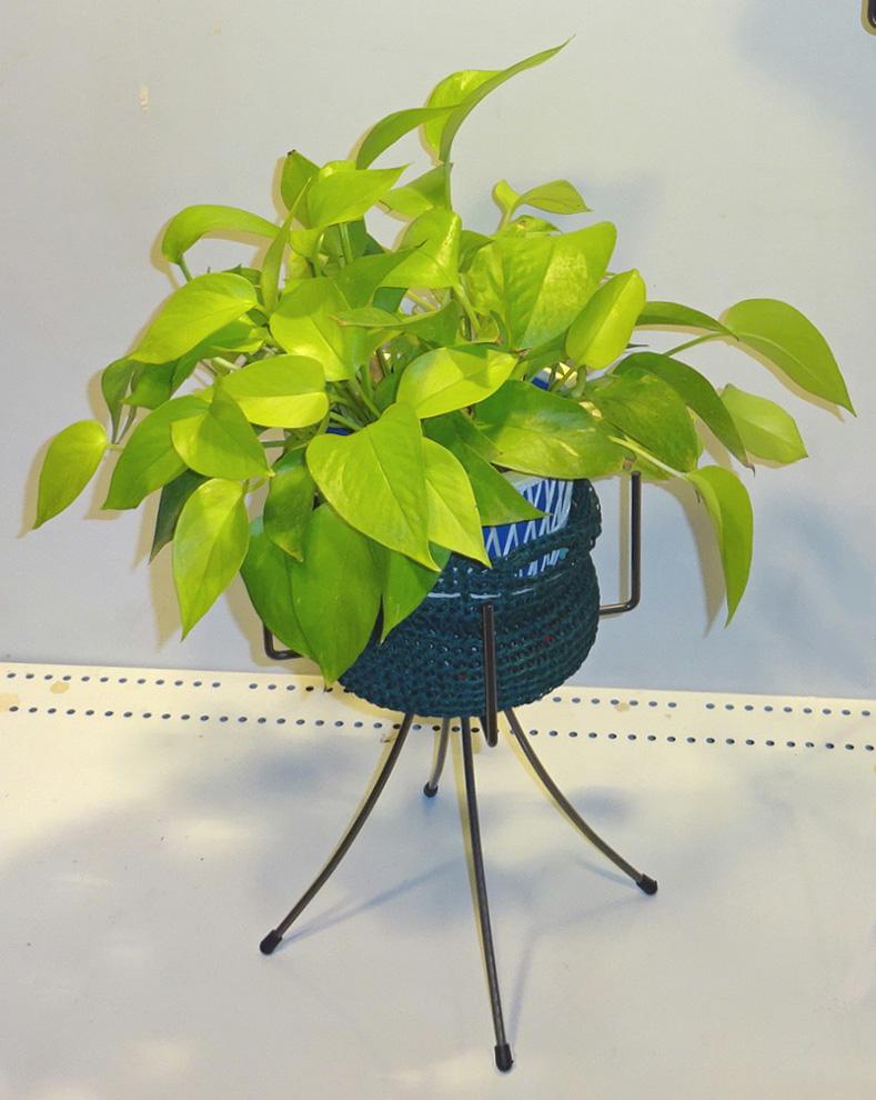 http://gr-garden.com/item/planter/324image.jpg