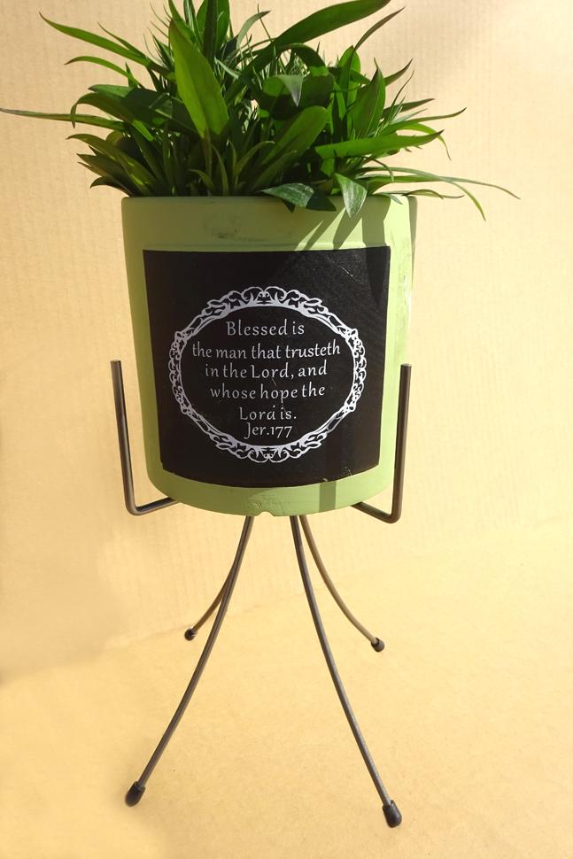 http://gr-garden.com/item/planter/324image2.JPG