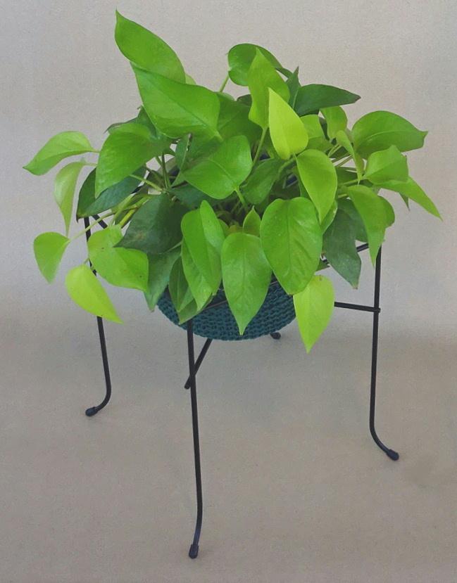 http://gr-garden.com/item/planter/328image.jpg